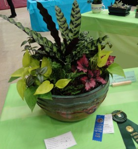 Winning exhibit Horticulture Division, class 18 Combination Planting grown for foliage