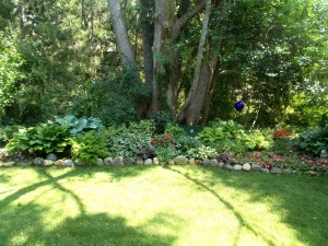 A serene backyard border.