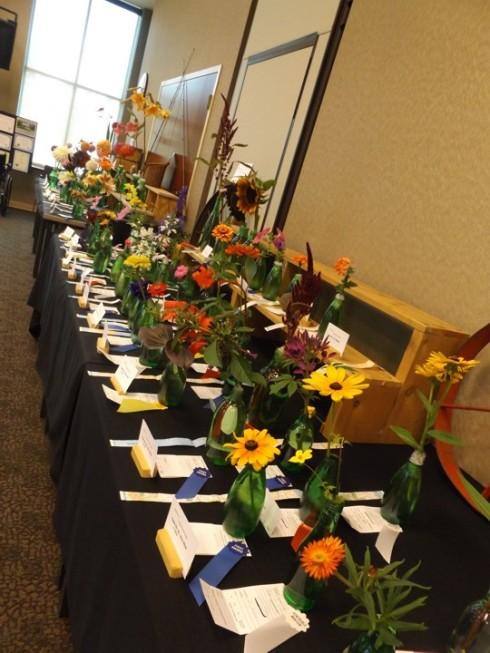 Horticulture: Annuals