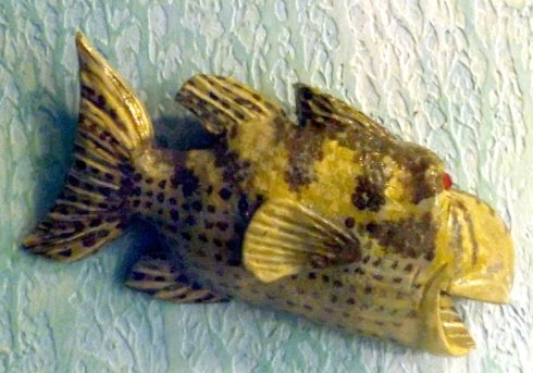 Rock Bass SnozFish